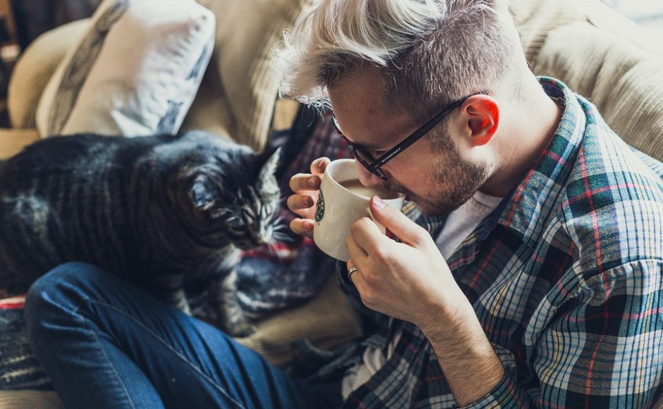 Taking Your Furball With You: Is 2020 the Year of Pet-Friendly Accommodation?