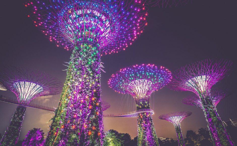 Exploring Lion City: 5 Places to Visit in Singapore