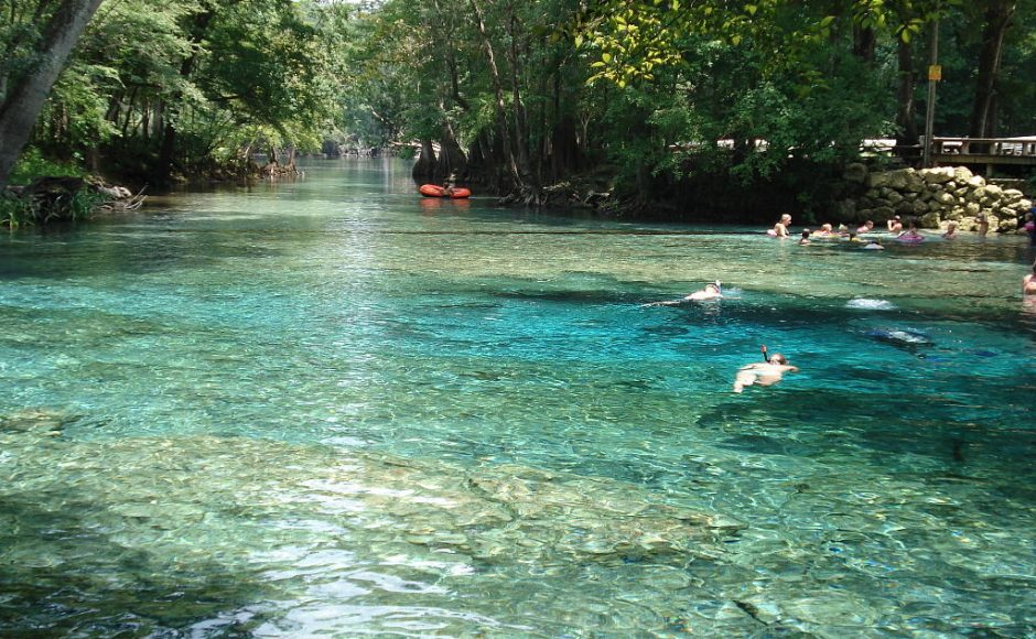 10 Best Springs in Florida That Welcome You in Their Natural Embrace