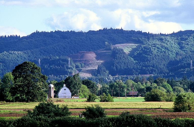 From Bird-Watching to Wine Trails: 5 Reasons to Visit Sauvie Island